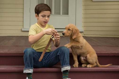 a-dogs-purpose-review-ew